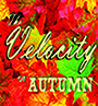 The Velocity Of Autumn @ Billings | Montana | United States